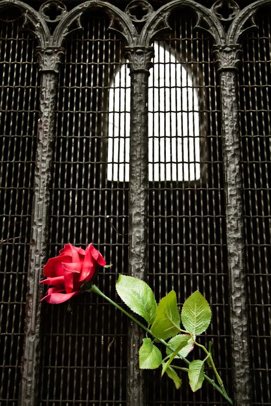 Razbijemo monotoniju bojom La_rose_funebre_by_zanzafine