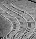 Swirl Path by T-NEWLAND