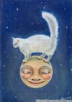 Cat on Moon. by wasteddreams