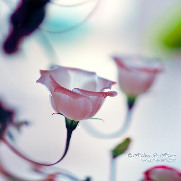 candelabra by kim-e-sens