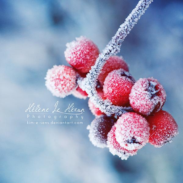 the last frozen ones by kim-e-sens