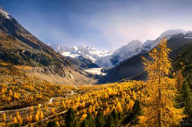 Golden Valley by RobinHalioua