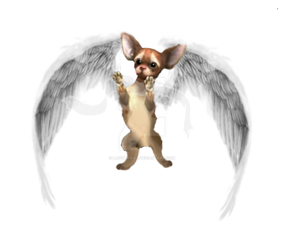 Foopets Items- Archangel Chi by LadyLirriea
