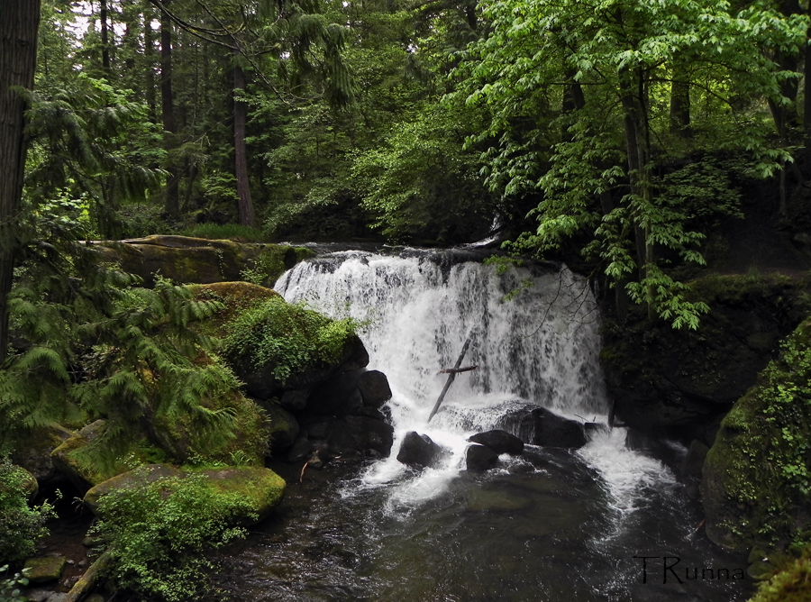 Whatcom Falls  by TRunna