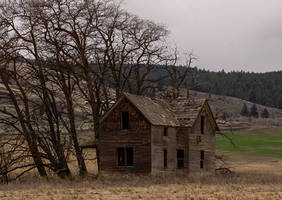 Abandoned Homestead by TRunna
