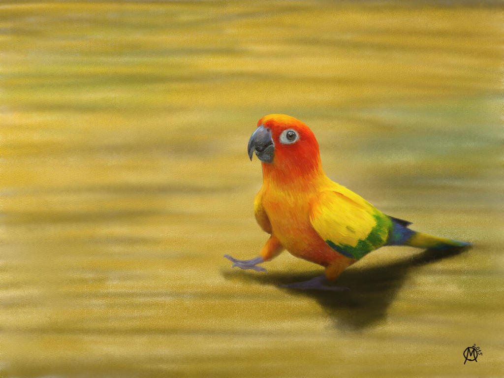 Parrot by YELTZIN