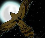 :.:Midnight Flight:.: