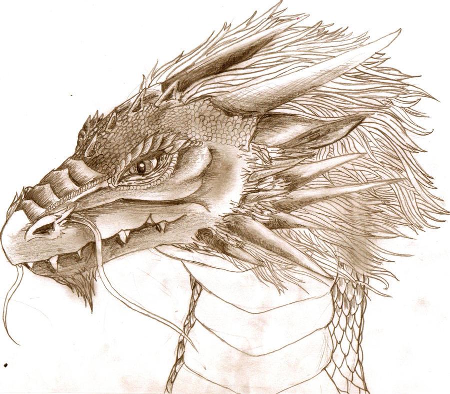 Quick dragon head sketch by BobbyDazzl3r on DeviantArt