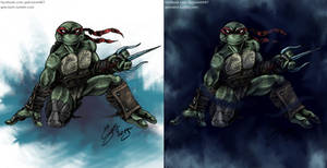 TMNT - DTR Raphael