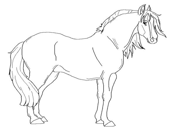 Free Draft Horse Lineart By Kokamo77 On Deviantart