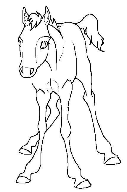 curious foal lineart by kokamo77 on deviantart
