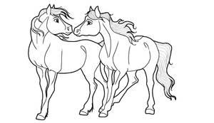Horse couple Lineart PNG by kokamo77