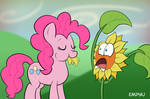 Pinkie Dream Eater - 30MC