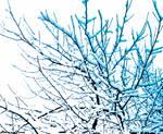 It's just a snow... by HarveyDentMustDie