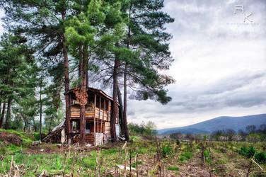 The House by sleepingawakerza