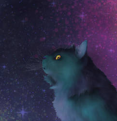 Cosmic Cat by KatiesPetPawtraits