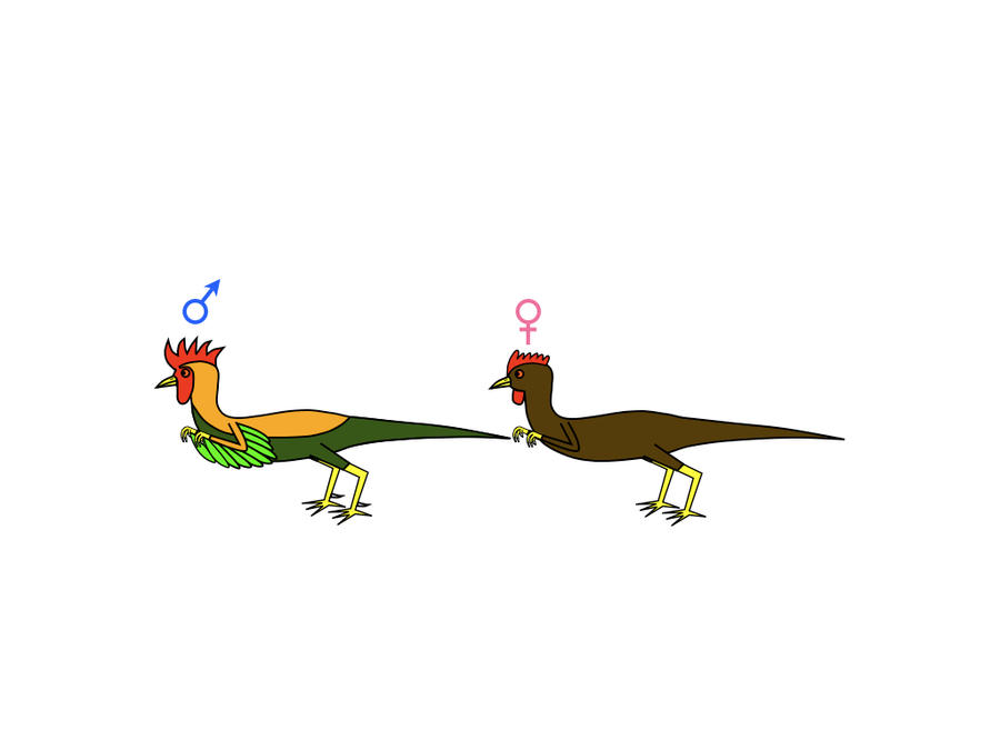 Gallusasaurus by platypus12