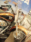 Harley Exhibition 65 by nanaphotos