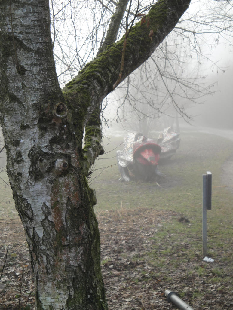 Monster in the fog by nanaphotos