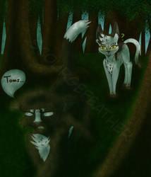 Walk in the Woods (FoS)