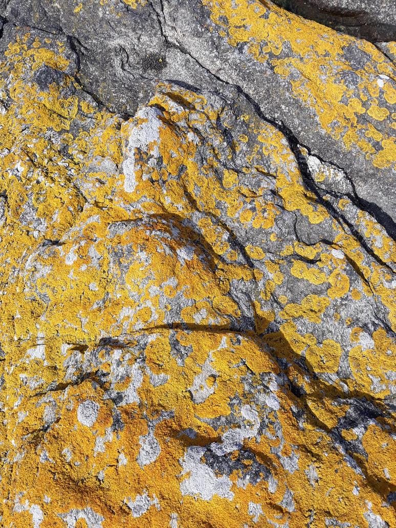 Yellow Stone by CrAz86