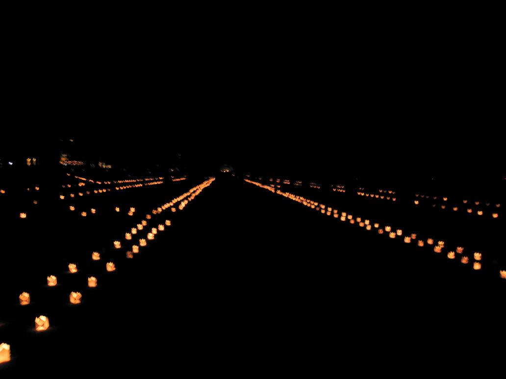 Festivalul luminii 4 by mariussyka