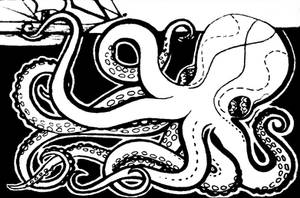 Octopus trading card