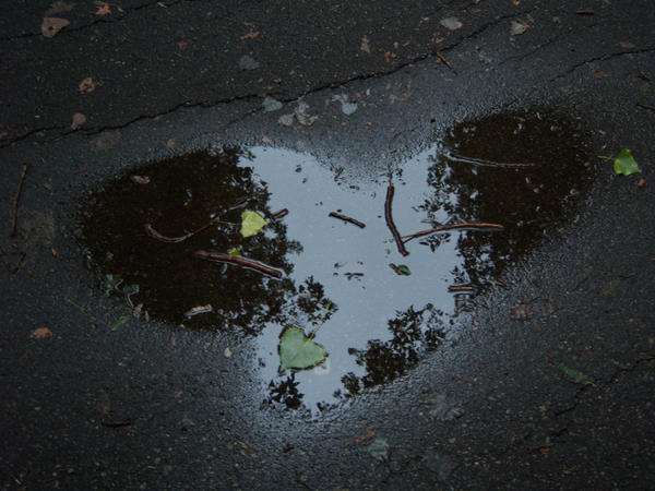 Puddle Love by solitarysumire