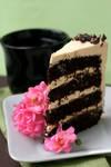 Microwave Cake 1