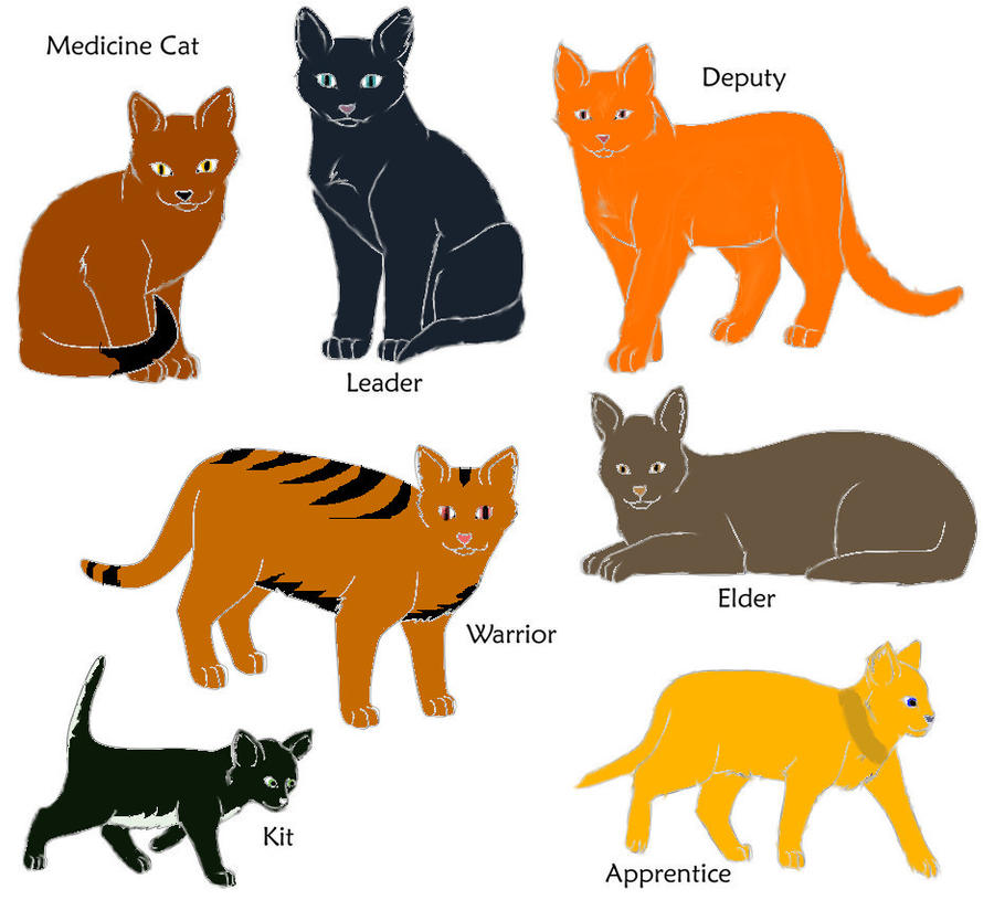 Warrior Cats Kit To Leader Bloodclan: Warrior Cats Shadow-bloods By Kit10kitten On DeviantArt