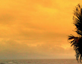 Sunset Breeze by softhunterdevil