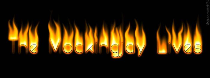 8d42784c dreamarzh24 0 0 Fire text #TheMockingjayLives by dreamarzh24