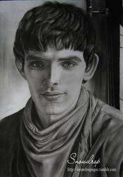 Colin Morgan ( Merlin) by snowdropngoc