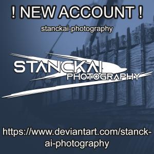 Stanckai's Profile Picture