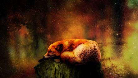 Sleeping fox 1920x1080p v3 Dream Misko