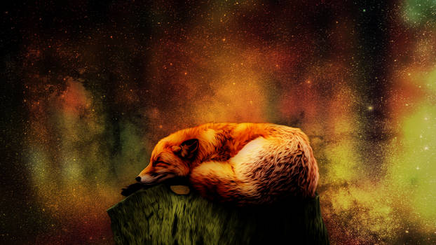 Sleeping fox 1920x1080p v3 Dream Misko
