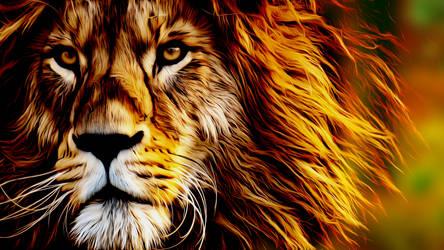 Lion 1920x1080p Misko