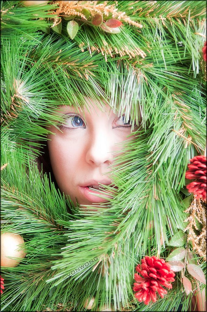 Hiding in the Mistletoe by DaemonP