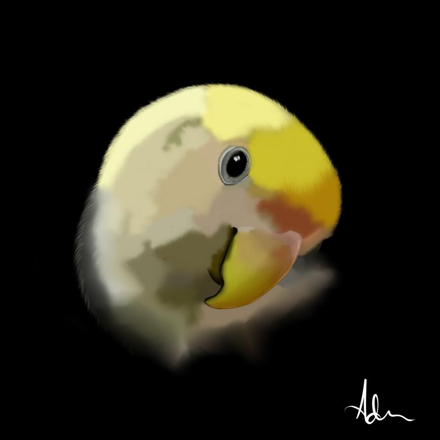Polly by circepix