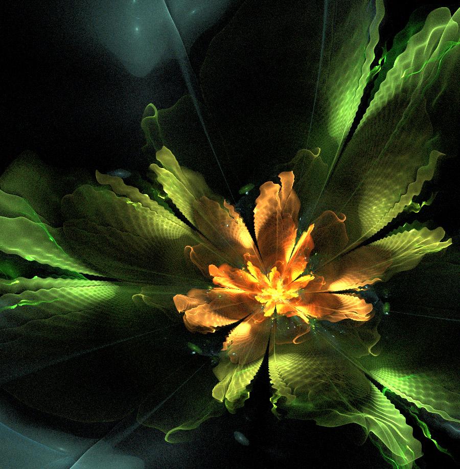 Fern flower. by Kondratij