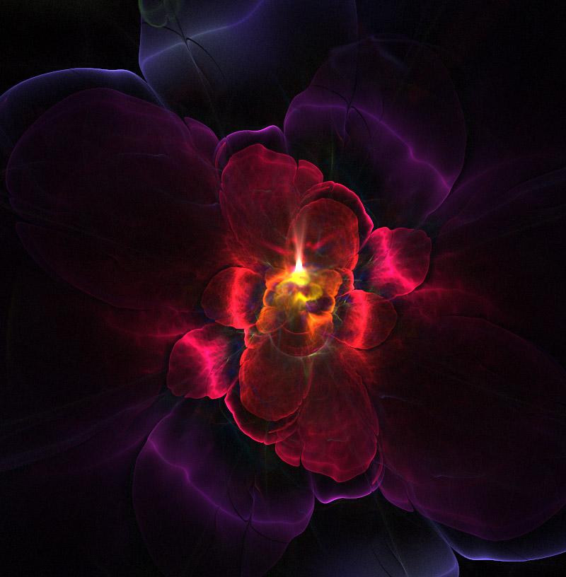 Orchid. by Kondratij