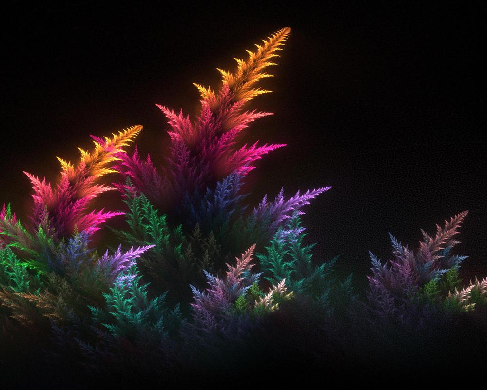 Coral. by Kondratij