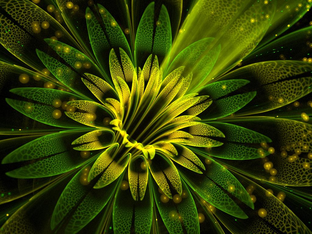 Swamp lily. by Kondratij