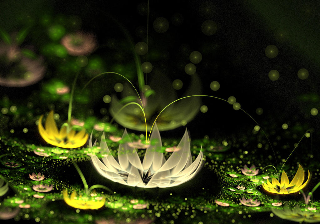 Lotuses Amazon. by Kondratij