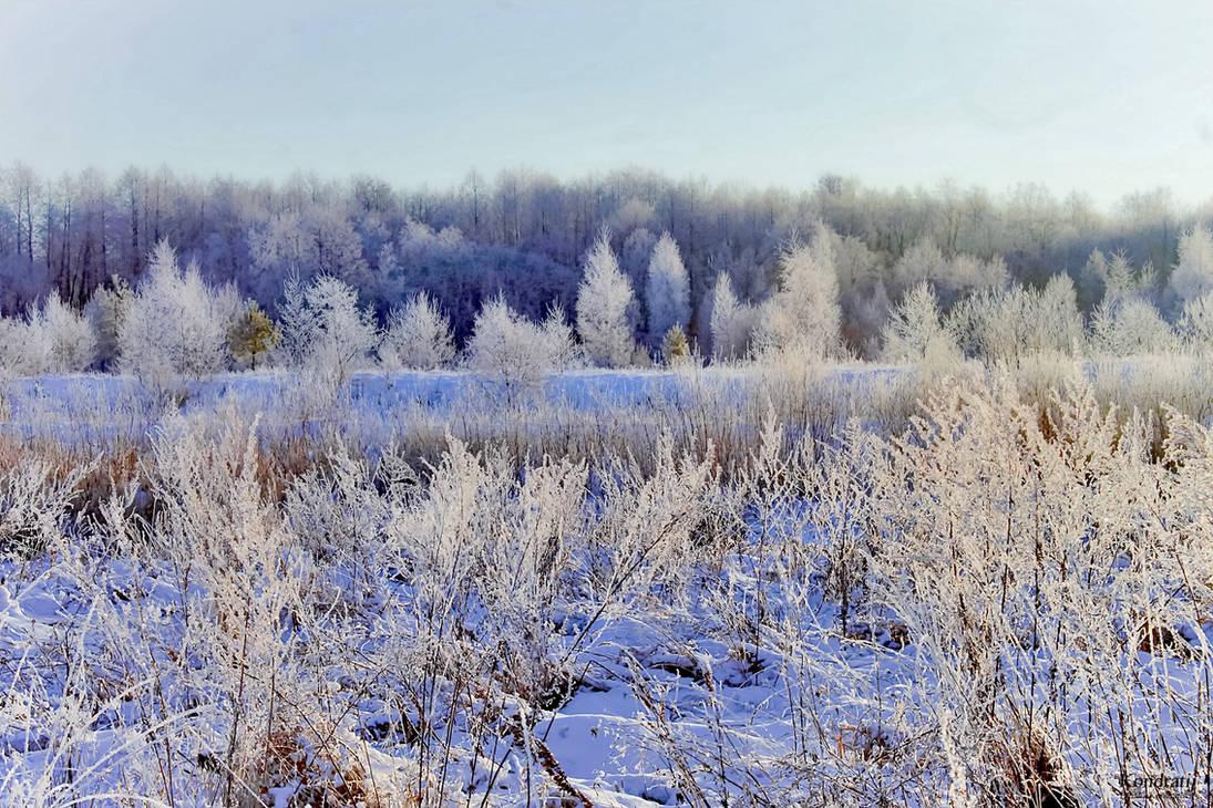 Russian frost. by Kondratij