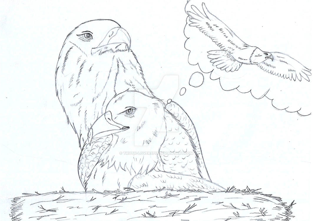 Isaiah 40:31 - story of the eager eagle by Truth-lover3712
