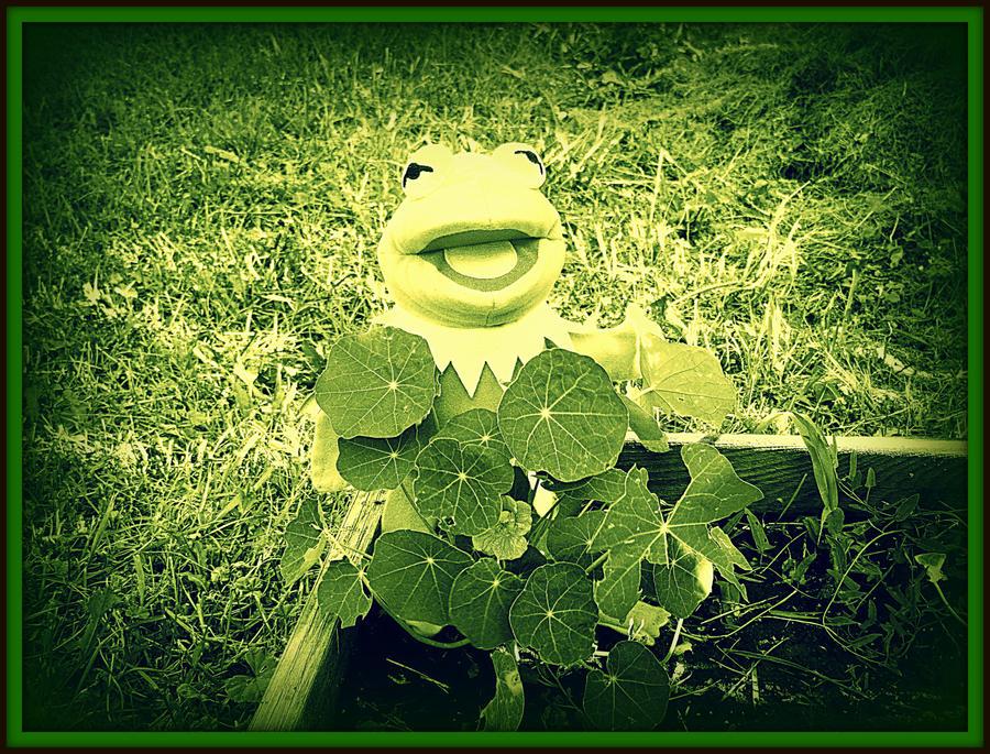 Kermit 7 by crimsonravenwarrior