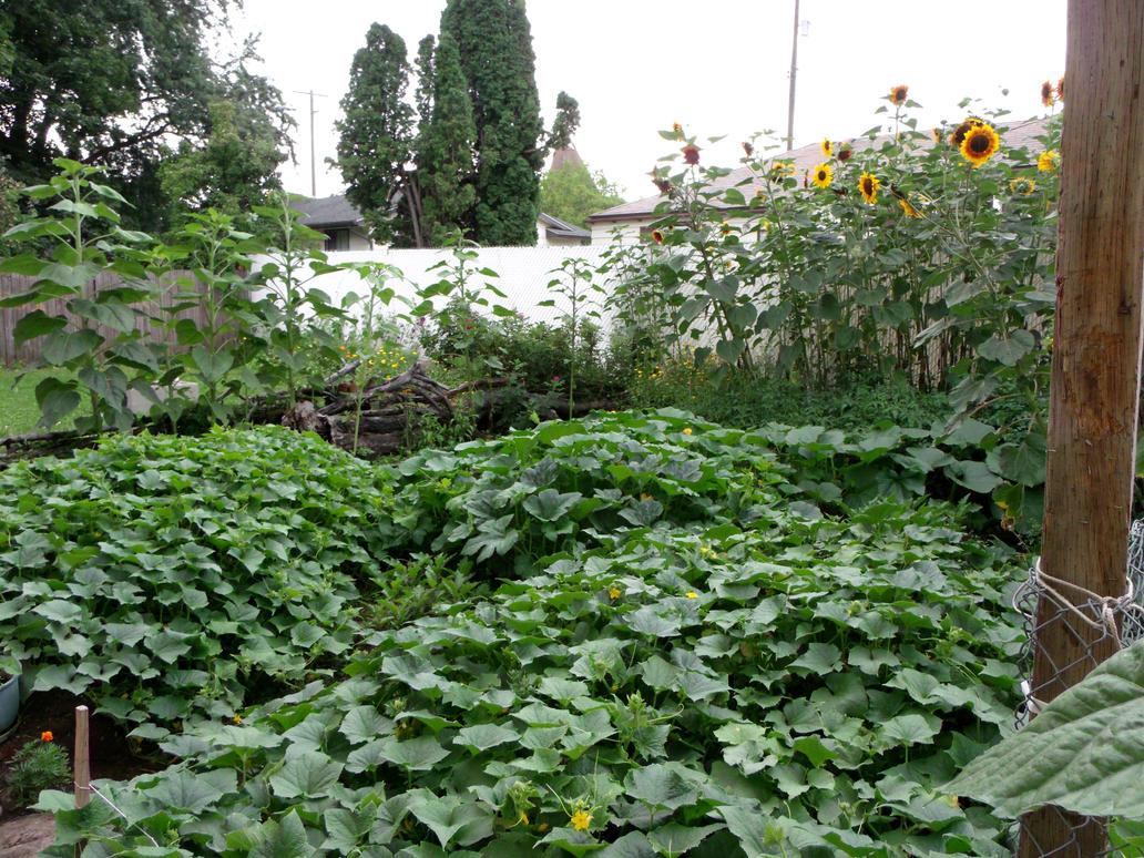 as you enter my side gardens... by crimsonravenwarrior
