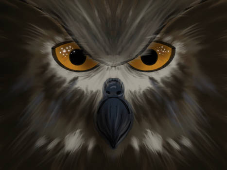 Owl Tutorial - Art with Flo using Procreate 5