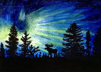 Northern Lights by Brikonfikon